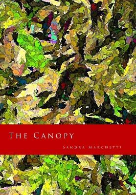 The Canopy by Sandra Marchetti